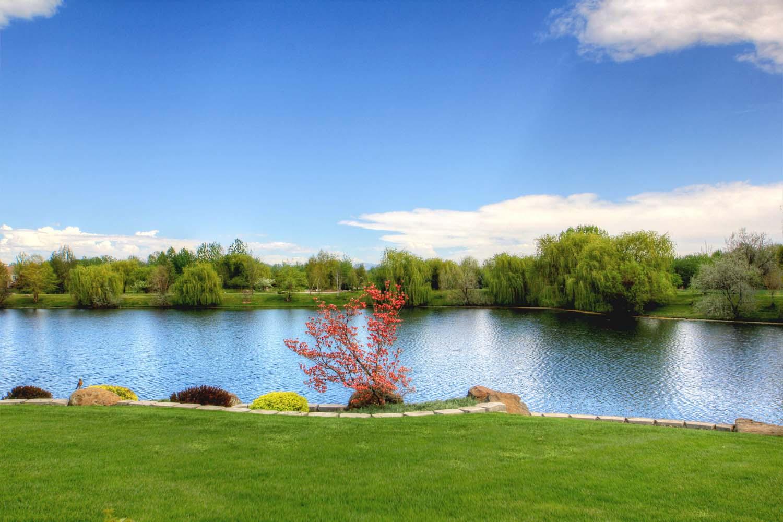 back-yard-lake-2