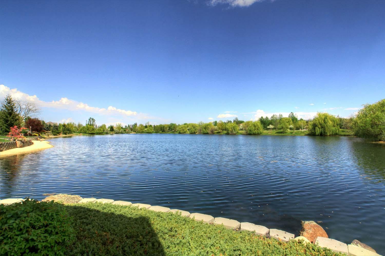 back-yard-lake