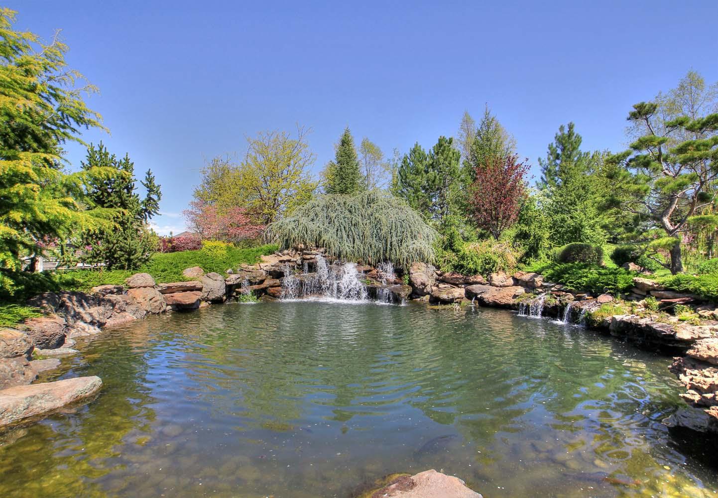 stocked-pond