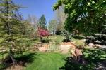 back-yard-garden-1
